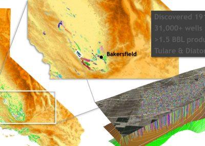 InSAR Data Analysis of the Belridge Field
